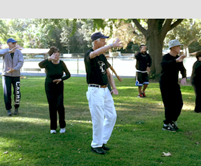 People in the park doing tai chi moves