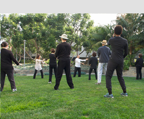 tai chi exercises that improve health